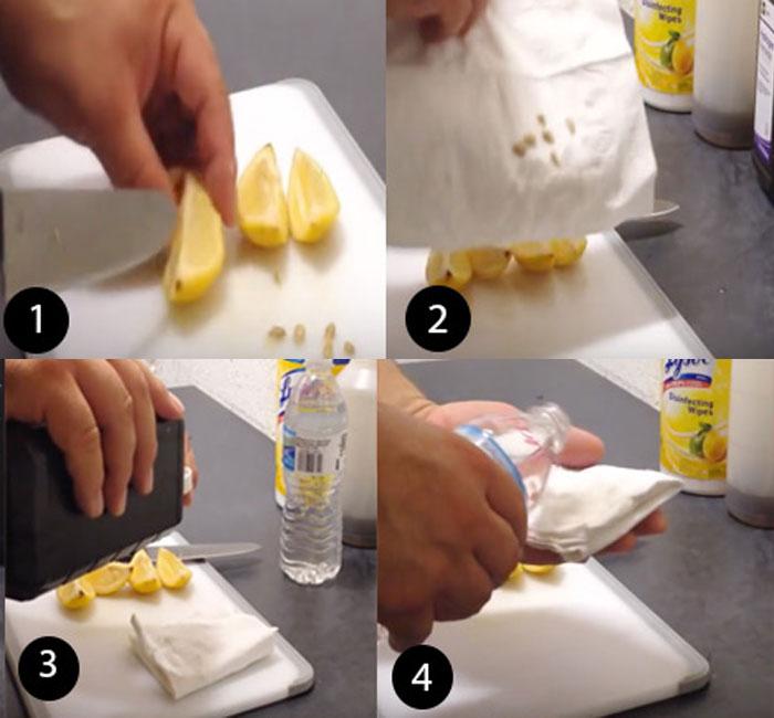 Grow lemon in a Pot