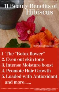 hibiscus powder uses